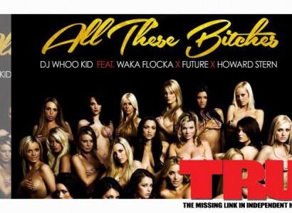 Waka Flocka Flame Ft. Future – All These Bitches